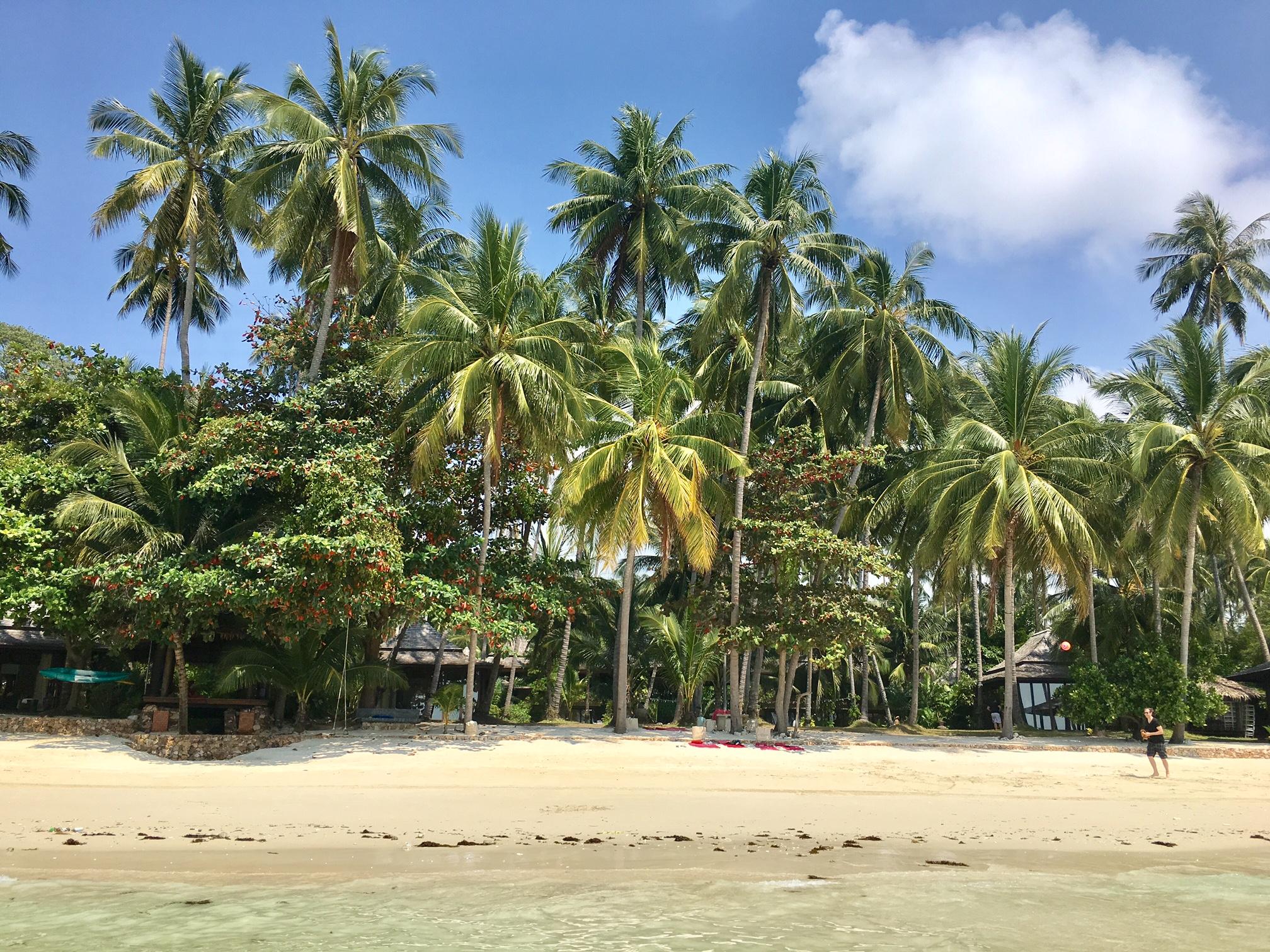 Strand auf Koh Samui, Bild Dr. Alexa Iwan