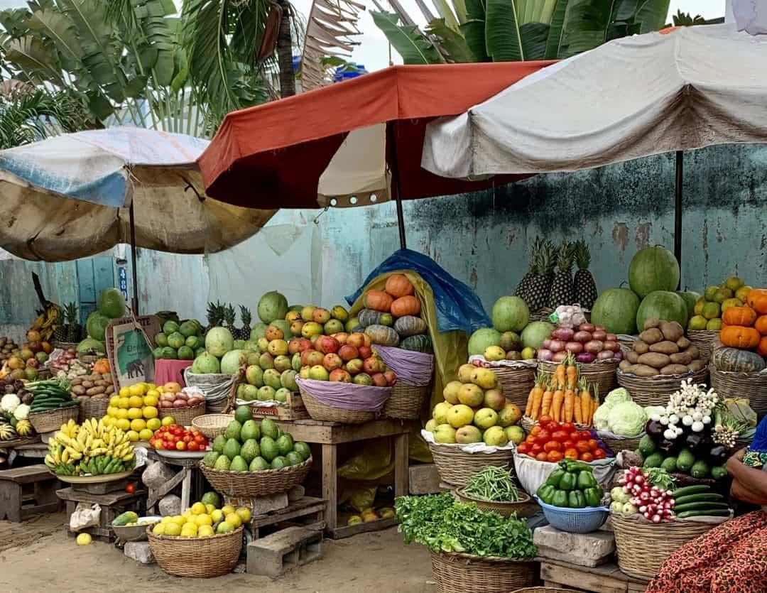 Obst und Gemüse nährt unsere Mitochondrien